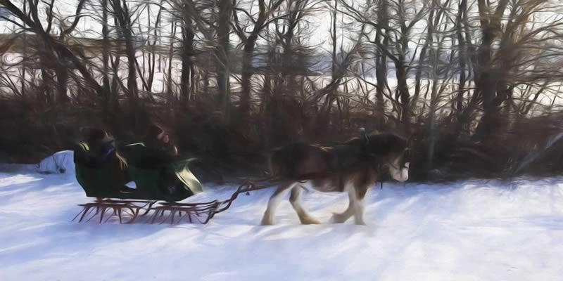 sleigh_02